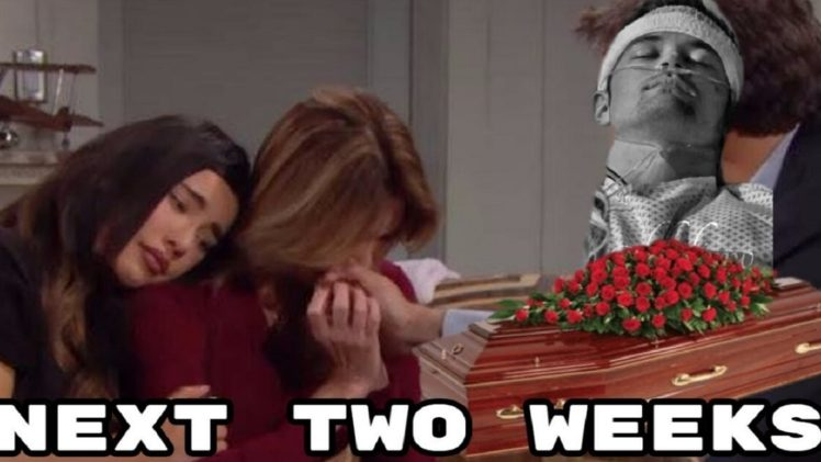 The Bold and the Beautiful Spoilers Two Weeks of November 11-22