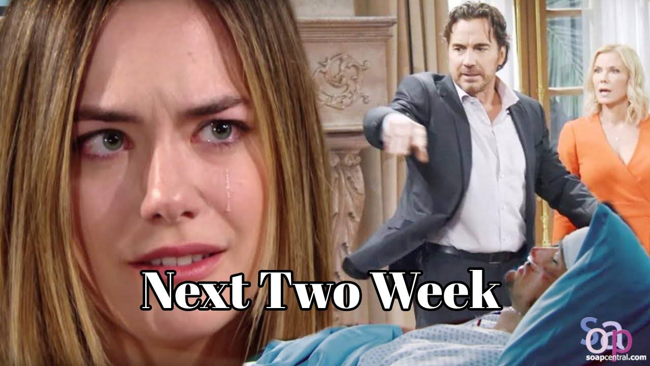 The Bold and the Beautiful Spoilers December 14-25 Next 2 Week